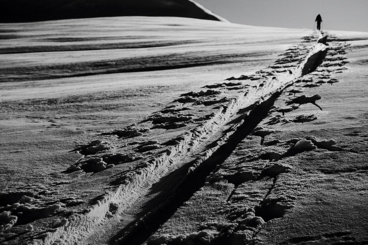 """""""This is a photo of a skintrack up to Sapphire Col earlier this year.  I took it because I always take pictures of my travels while touring and this just happened to be the right time of day for great shadows and texture. The ridge on the left leads up to Castor Peak. Great day with great friends!"""""""