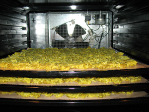 dehydrating rice