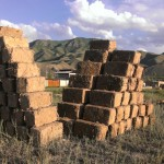 """Home-made"" bricks in Naryn. The sun finish the job."