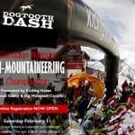 2014-dogtooth-dash-thumb-300