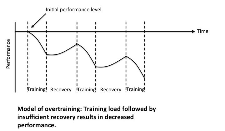 Model of overtraining