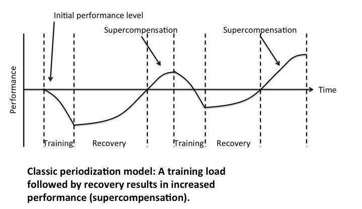 Training periodization model resulting in super-compensation.